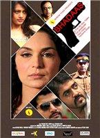 bhadaas-poster.jpg