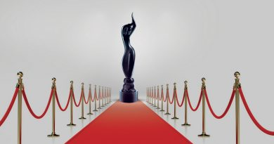 Премия FILMFARE AWARDS 2019. Результаты